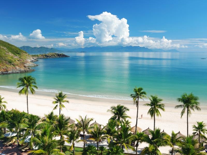 beach_tropics_sea_sand_summer_84726_800x600